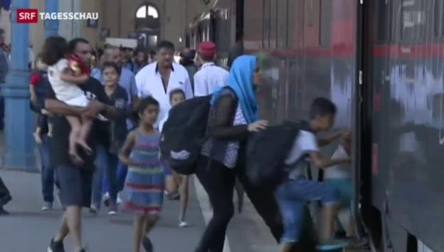 Video «Tagesschau vom 31.08.2015, 19:30» abspielen