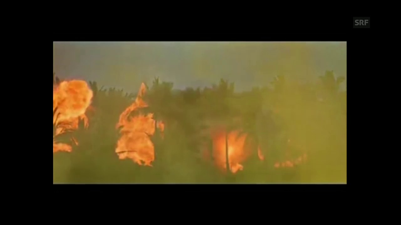 Ausschnitt aus dem Beginn von «Apocalypse Now»