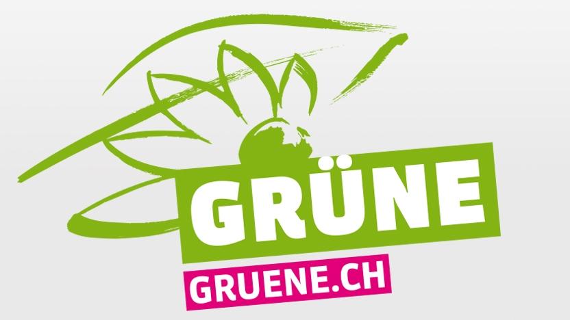 Gruene: Felix Wettstein (27.1.17)