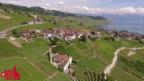 Video «Dorfporträt: Grandvaux (VD)» abspielen