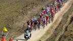 Video «Peter Sagan gewinnt Gent-Wevelgem» abspielen