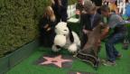 Video «Karel Gott schwer krank - Snoopy mit einem Stern» abspielen