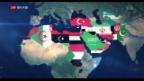 Video «Wie wirken sich die Ergebnisse der Midterms weltweit aus?» abspielen