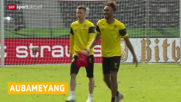 Video «Pierre-Emerick Aubameyang als Afrikas Fussballer des Jahres ausgezeichnet» abspielen