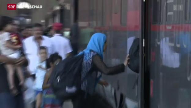 Video «Flüchtlinge stürmen Züge» abspielen