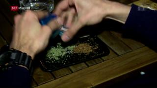 Video «FOKUS: Cannabis-Clubs in Barcelona» abspielen