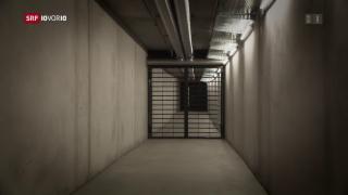 Video «Bringen härtere Strafen mehr Sicherheit?» abspielen