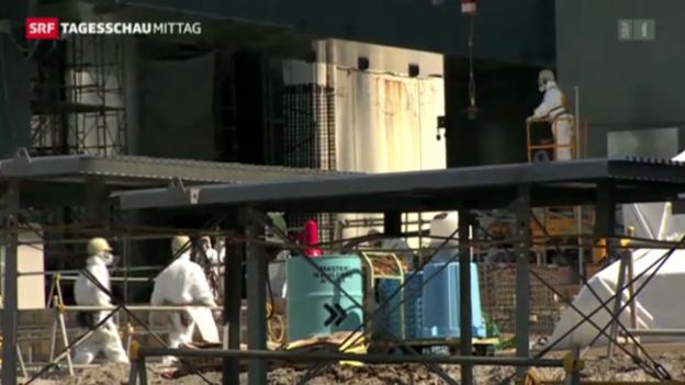 Video «Fukushima nach der Atomkatastrophe» abspielen