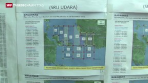 Video «Trümmerfeld im Meer entdeckt» abspielen