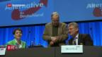 Video «AfD stellt Parteiprogramm vor» abspielen