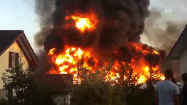 Video «Grossbrand in Gewächshaus (SRF Augenzeuge/Dani Marti)» abspielen