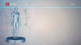 Video «FOKUS: Der Computer entscheidet über das Rückfallrisiko» abspielen