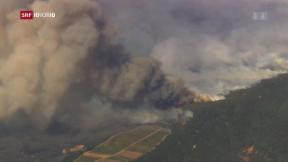 Video «Mindestens 17 Tote nach Bränden in Kalifornien » abspielen