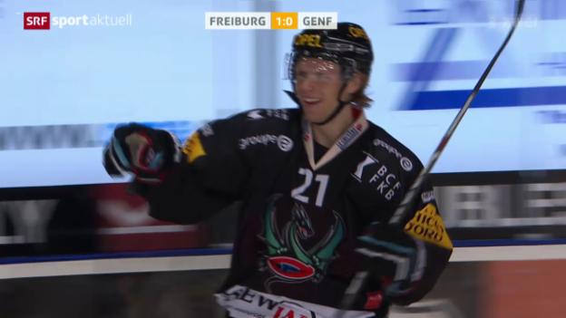 Video «Eishockey: NLA, Freiburg - Genf» abspielen