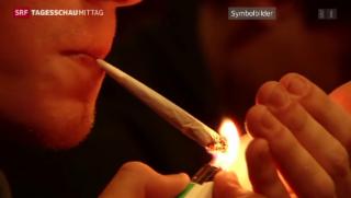 Video «Jugendliche weniger straffällig» abspielen