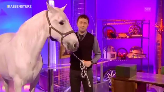 Video «England: Betrügerischer Pferdehändler» abspielen