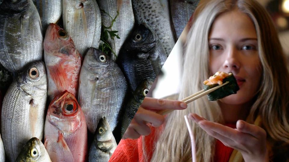 Aus dem Archiv: Bis zum letzten Fisch?