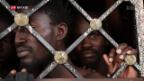 Video «Mehr Schutz für Flüchtlinge in Libyen» abspielen