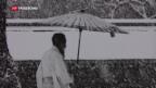 Video «Werner Bischofs Fernost-Reportagen in Zürich» abspielen
