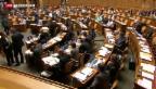 Video «Nationalrat sagt Ja zum Gripen» abspielen