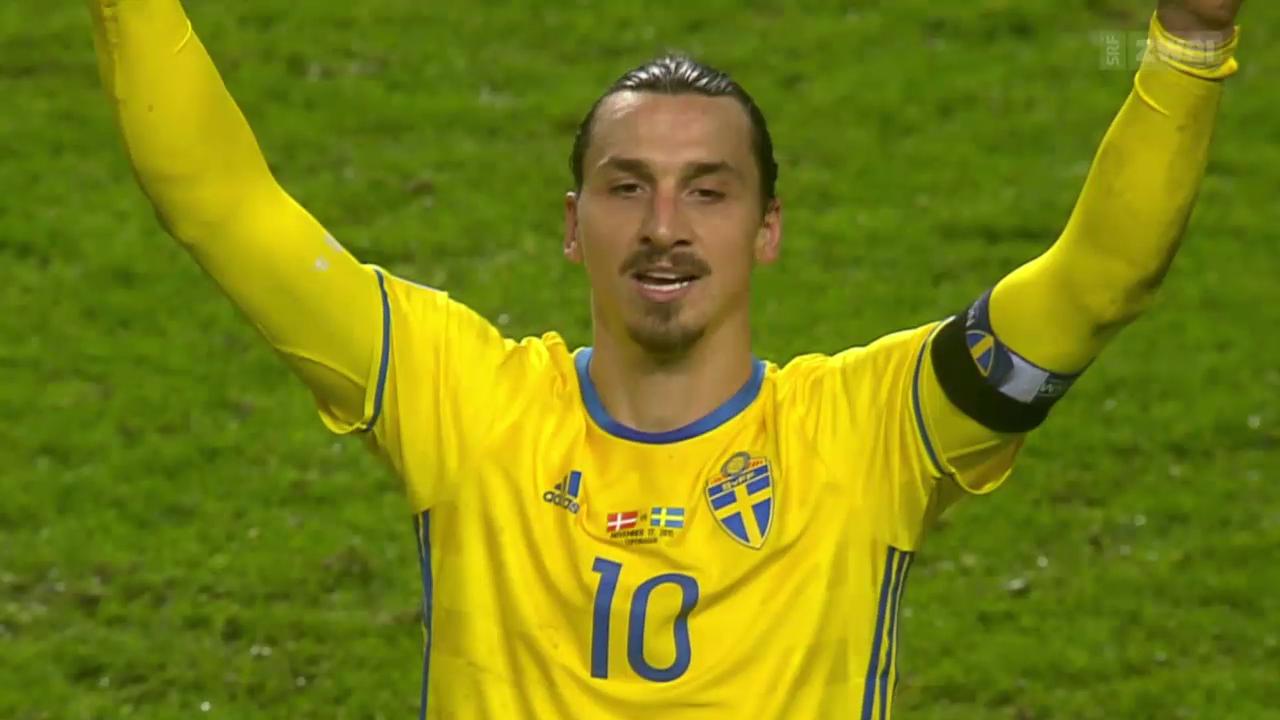 em qualifikation schweden