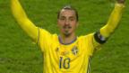 Video «Fussball: EM-Barrage, Dänemark-Schweden» abspielen
