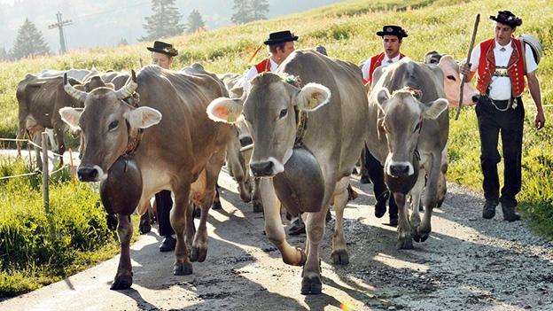 Schötten und jodeln