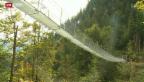 Video «Via Hängebrücke zum Maiensäss» abspielen