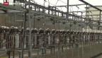 Video «Strommarktliberalisierung auch für Private» abspielen