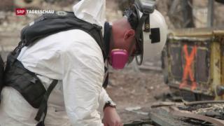 Video « Waldbrände in Kalifornien» abspielen