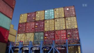 Video «Container als Wachstumsfaktor» abspielen