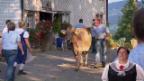 Video «Landfrauenküche-Hoppalas aus 10 Jahren» abspielen