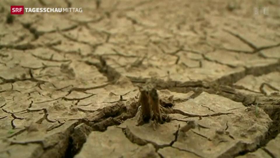 Streit wegen Wasserspar-Programm