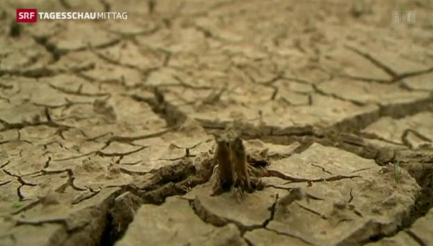 Video «Streit wegen Wasserspar-Programm» abspielen
