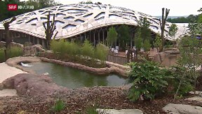 Video «Zoos sind unnötig» abspielen