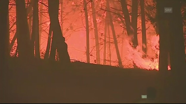 Video «Kampf gegen die Flammen» abspielen