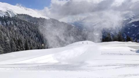 Winter trifft Frühling: Schneeteufel. D. Kirner.