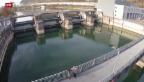 Video «Schweizer Strompreise - mal teuer, mal billig» abspielen