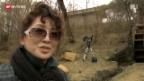 Video «Nordkorea: Filme als Propaganda-Mittel» abspielen