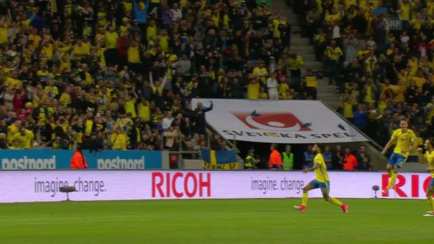 Video «Schweden schlägt Frankreich im Spitzenkampf» abspielen