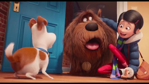 Video «Pets Trailer» abspielen