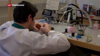 Video «Kantonale Unterschiede bei der Arbeitslosigkeit» abspielen