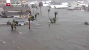 Video «Einer der stärksten Hurrikans fegt durch Florida» abspielen