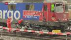 Video «Zug-Unfall in Winterthur» abspielen