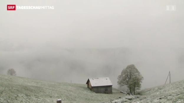 Video «Schneefallgrenze sinkt auf 700 Meter» abspielen