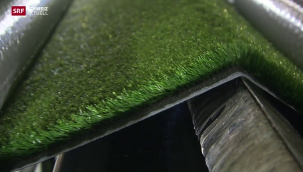 Video «Arsenal London kauft Appenzeller Rasen» abspielen