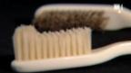 Video «Woher kommt eigentlich die Zahnbürste?» abspielen