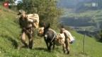 Video «Alpine Delikatessen» abspielen
