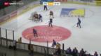 Video «Eishockey: NLA, ZSC Lions - Genf» abspielen