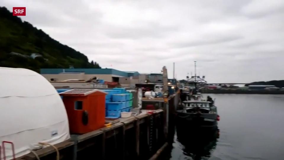 Sirenen machen auf Tsunami-Warnung in Hawaii und Alaska aufmerksam